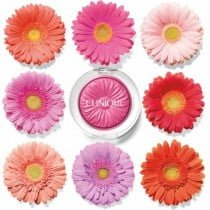 In Bloom Clinique