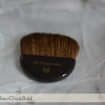 Dr Hauschka brush