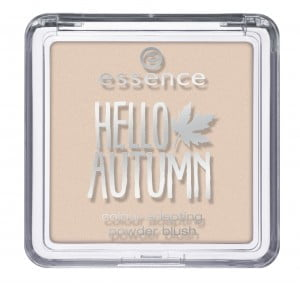 Hello Autumn Essence blush
