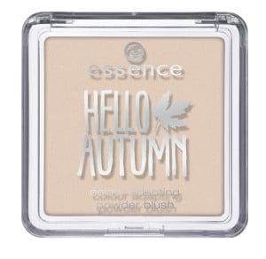 Hello Autumn Essence blush
