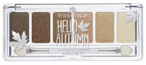 palette Hello Autumn Essence