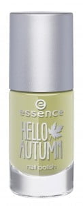 nail polish Hello Autumn Essence