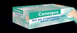 Roadshow Canespro
