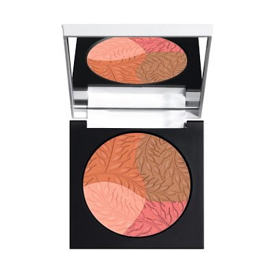 Multi Color Orange Blush Powder Diego Dalla Palma