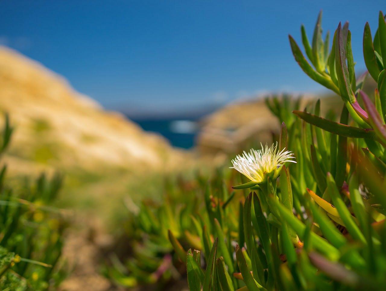 Vacanza estate 2018 in Sardegna